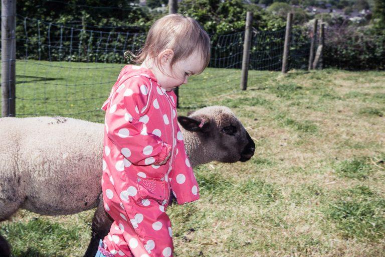 Photo of a Nettlecombe Farm Family Photoshoot